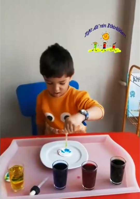 Montessori Etkinlikleri Damlalıkla Aktarma