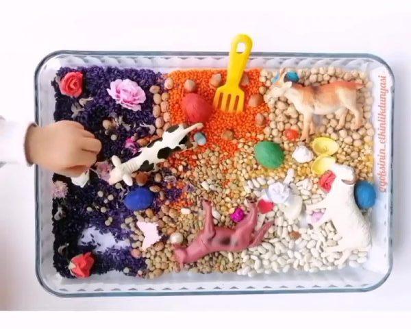 Montessori Etkinlikleri Bakliyatlarla Rengarenk Duyusal Oyun 1 E1588420154480